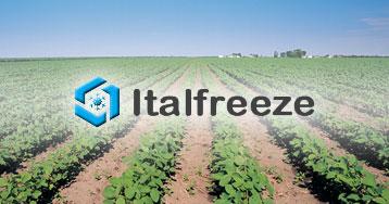 Italfreeze