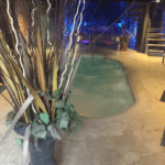 Water Seven centri benessere