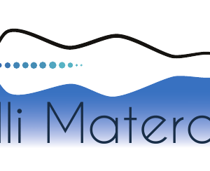logo-gilli-13102016.png