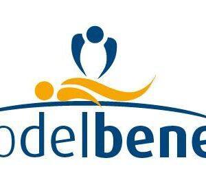 logo Tecnico del Benessere
