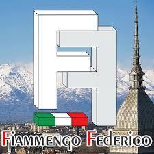 logo-fiammengo-federico-srl.jpg