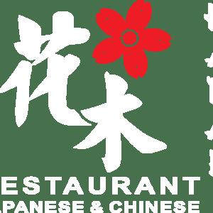 ristorante-hanaky-cento.png