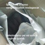 gustovanilla-favorite-vanilla-pods-italy.jpeg